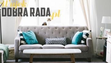 Porada - Jak wybrać sofę?